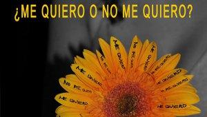 cartel_me-quiero-o-no-me-qu